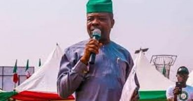 Ihedioha's Words On Diamond Scrutinized