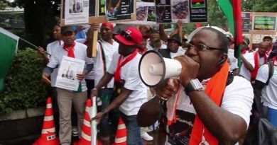 'IPOB Condemns Members Attack In South Africa'