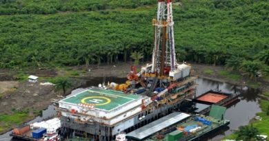 Court Sanctions Seplat's Acquisition Of Eland Oil And Gas