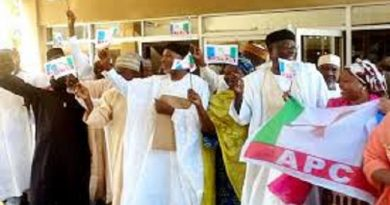 APC, Babachir Reject Results As PDP Clears Adamawa LGs Polls