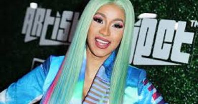 (VIDEO) Angry Fans Threw Bottles At Cardi B On Stage In Ghana