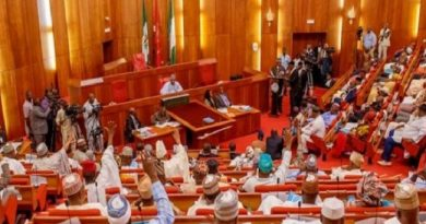 Just In: Constitution Amendment: Reps Propose Independent Candidacy