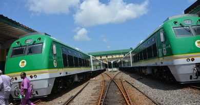 FG Defends Extending Rail Construction To Niger Republic