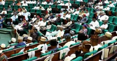 Reps Move To Stave Off Boko Haram Attacks