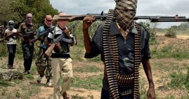 How Gunmen Kidnapped 18 Police Officers Unchallenged