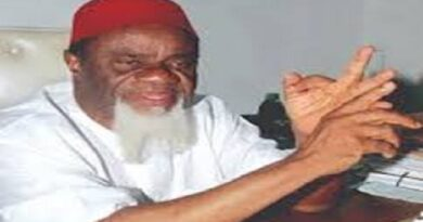 Biafra: We Are Ready To Go, Don't Contest 2023 Election, Ezeife Tells Igbo Politicians
